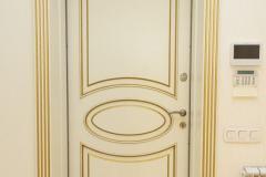 Межкомнатные двери из ясеня глухие с обкладом